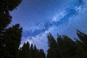 A View Of The Stars Of The Blue Milky Way With Pine Trees Forest Silhouette In The Foreground. Night poster