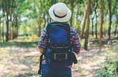 Back Side Of Attractive Woman With Backpack Adventure Hiker Walking Go To Trekking In The Forest Sig poster