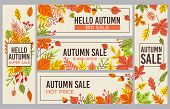 Fall Sale Banners. Autumn Season Sales Promotion Banner, Seasons Discount And Autumnal Poster With F poster