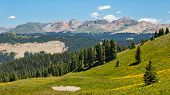 Alpine Panorama Along The Colorado Trail