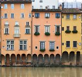 stock photo of underdog  - Elevations of the buildings of the arno florence - JPG