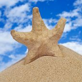 closeup of a paper-mache seastar on the sand of a beach