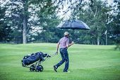 picture of testis  - Golfer on a Rainy Day Leaving the Golf Course  - JPG