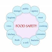 stock photo of e coli  - Food Safety concept circular diagram in pink and blue with great terms such as public agency bacteria and more - JPG