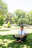 Full length of mature businessman using laptop while sitting on grass in park