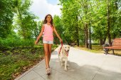 pic of dog park  - Nice beautiful teenage girl with her pet dog walking in the park on sunny day