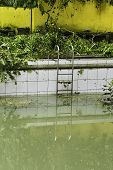 picture of typhoon  - Dirty swimming pool after a strong typhoon - JPG