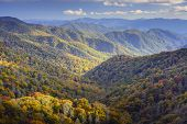 pic of gatlinburg  - Dawn in the Smoky Mountains National Park - JPG