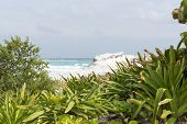 picture of yucatan  - A view of the ocean in Cancun beach on the Yucatan - JPG