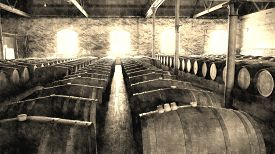 foto of wine cellar  - Aged photo of Historical Wine Cellar featuring rows of wine barrels in winery after vintage and harvest - JPG
