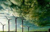 picture of wind-farm  - Renewable energies - JPG