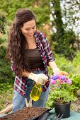 picture of pesticide  - young woman spraying pesticide on her flowers - JPG
