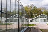 image of greenhouse  - greenhouse with reflections of other greenhouses in glass wall - JPG