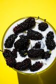 foto of mulberry  - Photo of the glass milk with mulberry yellow background - JPG