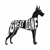 picture of great dane  - Concept silhouette of Great Dane with text inside isolated black on white background - JPG