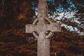 foto of celtic  - Celtic stone cross hidden in a brushwood - JPG