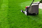 stock photo of lawn grass  - Lawn mower on green grass - JPG