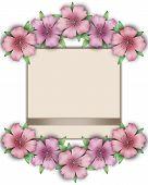 stock photo of azalea  - Flower frame - JPG