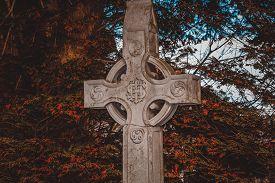 picture of celtic  - Celtic stone cross hidden in a brushwood - JPG