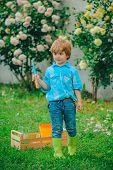 Child Working In Garden Near Flowers Garden. Happy Son Working In The Garden. Gardening Activity Wit poster