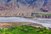 View of Spiti valley with green fields and Spiti river in Himalayas. Spiti valley, Himachal Pradesh, poster