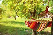 Bright Comfortable Hammock Hanging In Green Garden poster