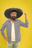 Celebrate Traditional Mexican Holiday. Lets Have Fun. Mexican Guy Happy Festive Outfit Ready To Cele poster