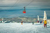 Amazing Snow Covered Trees And Winter Ski Resort With Colorful Fast Cable Cars. Active Skiers Skiing poster