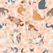 Cat Pattern. Seamless Texture With Cute Multicolor Cats, Kids Wallpapers With Funny Happy Pets, Fabr poster