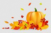 Autumn Background. Thanksgiving Vector Banner With Pumpkin Gold Red Leaves Isolated On Transparent B poster