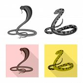 Vector Design Of Mammal And Danger Logo. Set Of Mammal And Medicine Stock Vector Illustration. poster