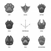 Vector Illustration Of Wildlife And Trace Icon. Set Of Wildlife And Walk Stock Symbol For Web. poster