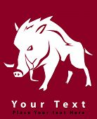 image of wild hog  - wild boar design  - JPG