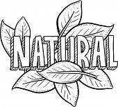picture of naturel  - Doodle style natural food or product illustration in vector format - JPG