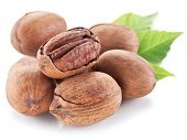 stock photo of pecan nut  - Pecan nuts with leaves isolated on a white background - JPG