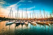 stock photo of yachts  - Sea bay with yachts at sunset - JPG