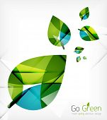 picture of nature conservation  - Green leaves spring nature design concept - JPG