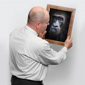 Funny picture of a man and mirror with his monkey face.