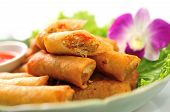 foto of chinese food  - Fried Chinese Traditional Spring rolls  delicious  food - JPG