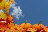 stock photo of fall decorations  - Colorful Fall Border Three small pumpkins on fall leaves with sky background - JPG