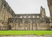 stock photo of chepstow  - The ruins of Tintern Abbey in Wales  on the banks of the river Wye close to the English border - JPG