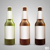 picture of liquor bottle  - Beer bottle set color art - JPG