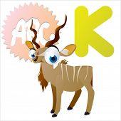 stock photo of animal eyes  - vector isolated cute happy big eyes abc animals - JPG