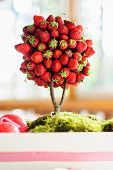 picture of wedding table decor  - Strawberry tree on the table in summer wedding decor  - JPG