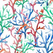 picture of crab  - Beautiful watercolor vector pattern with corals shells and crabs - JPG