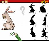 foto of brain-teaser  - Cartoon Illustration of Education Shadow Matching Game for Preschool Children - JPG