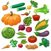 pic of maize  - Vegetables icons set with cauliflower maize cabbage radish isolated vector illustration - JPG