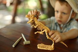 stock photo of boy scout  - little boy wants to be an archaeologist - JPG