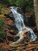 picture of hollow log  - waterfall on logs hollow n - JPG