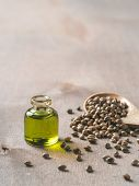 Hemp Seeds And Hemp Oil On Brown Wooden Table. Hemp Seeds In Wooden Spoon And Hemp Essential Oil In  poster